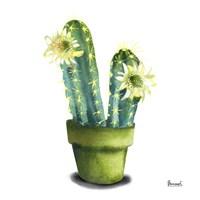 Cactus Flowers II Fine Art Print