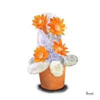 Cactus Flowers VI Fine Art Print