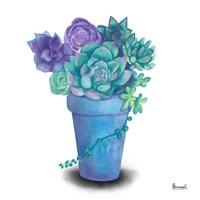 Turquoise Succulents IV Fine Art Print