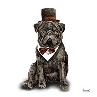 Pugs in Hats III Fine Art Print