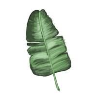 Leaves of the Tropics I Fine Art Print