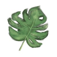 Leaves of the Tropics II Fine Art Print