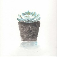 Watercolor Cactus Still Life I Fine Art Print