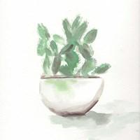 Watercolor Cactus Still Life III Fine Art Print