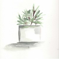 Watercolor Cactus Still Life IV Fine Art Print
