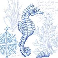 Coastal Sketchbook Sea Horse Fine Art Print