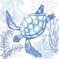 Coastal Sketchbook Turtle Fine Art Print