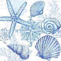 Coastal Sketchbook Shell Toss Fine Art Print