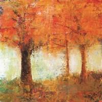Fall Trees Fine Art Print