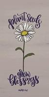 Plant Seeds Fine Art Print