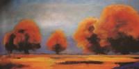 Western Sky Fine Art Print