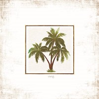 Palm Trees Fine Art Print