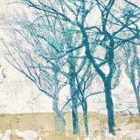 Turquoise Trees II Fine Art Print