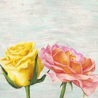 Funky Roses I Fine Art Print