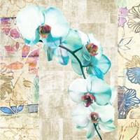 Kaleidoscope Orchid II (detail) Fine Art Print