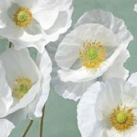 Poppies on Mint I Fine Art Print