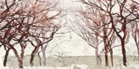 Rusty Trees Fine Art Print