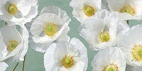 Poppy Arrangement (Mint) Fine Art Print