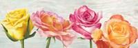 Funky Roses Fine Art Print