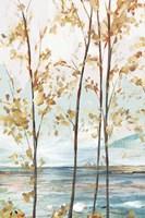 Sage Tree Forest I Fine Art Print