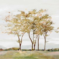 Golden Acre Wood Fine Art Print