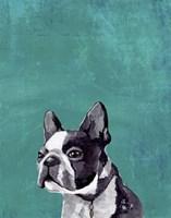 Frenchie Puppy Fine Art Print