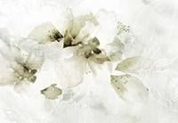 Golden Cherry Blossoms Fine Art Print