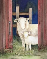 Farm Family Sheep Fine Art Print