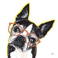 Bespectacled Pet IV Fine Art Print