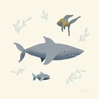 Ocean Life Shark Fine Art Print