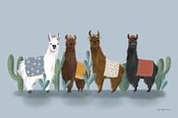 Delightful Alpacas V Fine Art Print