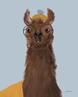 Delightful Alpacas III Fine Art Print