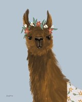 Delightful Alpacas II Fine Art Print