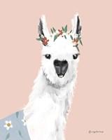 Delightful Alpacas I Fine Art Print