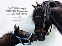 Friend Fine Art Print