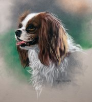 Regal Companion Fine Art Print