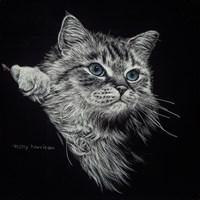 Kitten II Fine Art Print