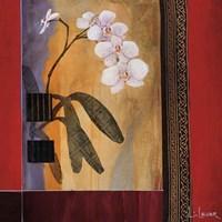 Orchid Lines I Fine Art Print