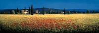Tuscan Panorama - Poppies Fine Art Print