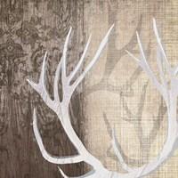 Deer Lodge I Fine Art Print