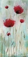 Splash Poppies I Fine Art Print