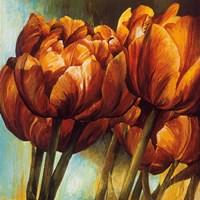 Floral Radiance I Fine Art Print
