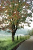 Almost Autumn Fine Art Print