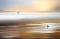 Silent Pause Fine Art Print