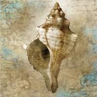 Aquatic Allure Framed Print
