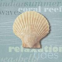 Beach Collection III Framed Print
