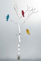 Three In A Tree Fine Art Print