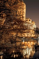 Central Park Glow I Fine Art Print