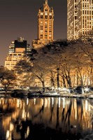 Central Park Glow II Framed Print
