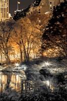 Central Park Glow III Fine Art Print